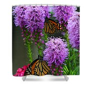 Winged Beauties Shower Curtain