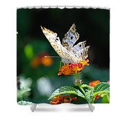 Winged Butter Shower Curtain