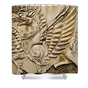 Winged Dragon Shower Curtain