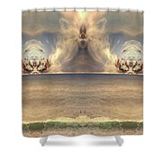 Winged Warrior Shower Curtain