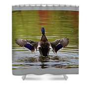 Winging It Shower Curtain