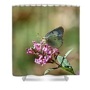 Wings And Petals Shower Curtain