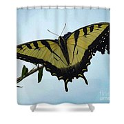 Wings Are Perfect Match - Eastern Tiger Swallowtail Shower Curtain