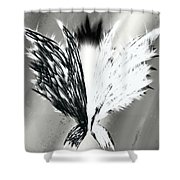 Wings No.1 Shower Curtain