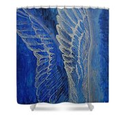 Wings Of Angel Shower Curtain
