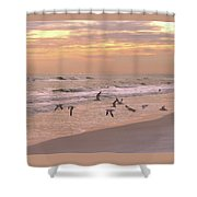 Wings Of Dawn Shower Curtain