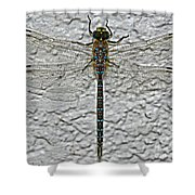 Wings On Stucco Shower Curtain