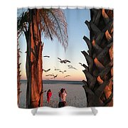 Wings Over The Palms Shower Curtain