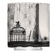 Wings Remember Shower Curtain