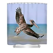 Wingspan Shower Curtain
