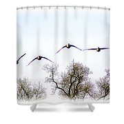 Wingspread Shower Curtain