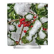 Winter - Ice Coated Holly Shower Curtain