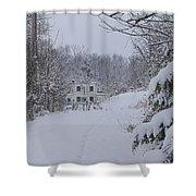 Winter 2010 Shower Curtain