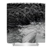 Winter Abstract Black And White Shower Curtain