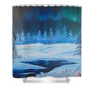 Winter Aurora Shower Curtain