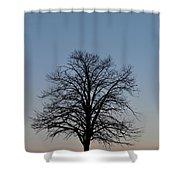 Winter Bare Shower Curtain