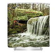 Winter Beauty Shower Curtain