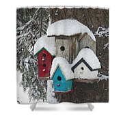 Winter Birdhouses Shower Curtain