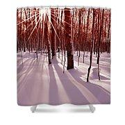 Winter Bling Shower Curtain