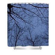 Winter Blue Sky Shower Curtain