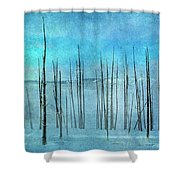 Winter Blues  7913 Shower Curtain