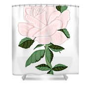 Winter Blush Rose Shower Curtain