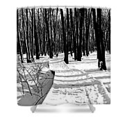 Winter Boardwalk In Black And White Shower Curtain
