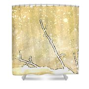 Winter Born Shower Curtain