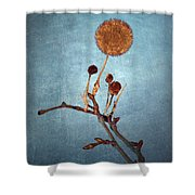 Winter Branch Shower Curtain