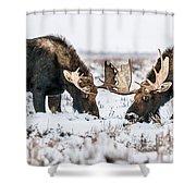 Winter Buddies Shower Curtain