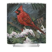 Winter Cardinal Shower Curtain by Nadine Rippelmeyer