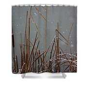 Winter Cat Tail Shower Curtain