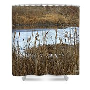 Winter Cattails  Shower Curtain