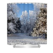 Winter Charm Shower Curtain