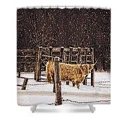 Winter Coat Shower Curtain
