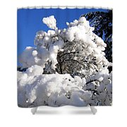 Winter Cotton Shower Curtain