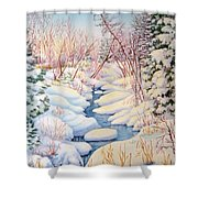 Winter Creek 1  Shower Curtain