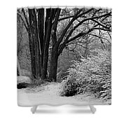 Winter Day - Black And White Shower Curtain