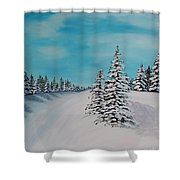 Winter Day Duvet Digital Painting Shower Curtain