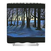 Winter Day's End Shower Curtain