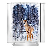 Winter Deer 1 Shower Curtain