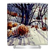 Winter Drifts Shower Curtain