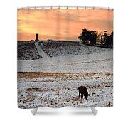 Winter Dusk At Bradgate Park Shower Curtain