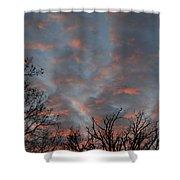 Winter Dusk Shower Curtain