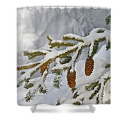 Winter Dusting Shower Curtain