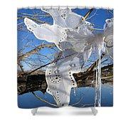 Winter Fairy Wings Shower Curtain