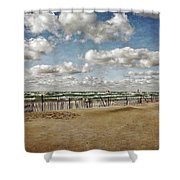 Winter Fences In Grand Haven 3.0 Shower Curtain