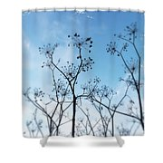 Winter Fennel Two Shower Curtain
