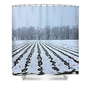 Winter Field Shower Curtain