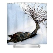 Winter Finery Shower Curtain
